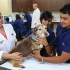 6 Reasons to become a Veterinary technician