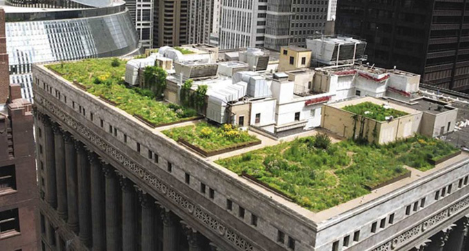 city-hall-rooftop-garden-in-chicago-7
