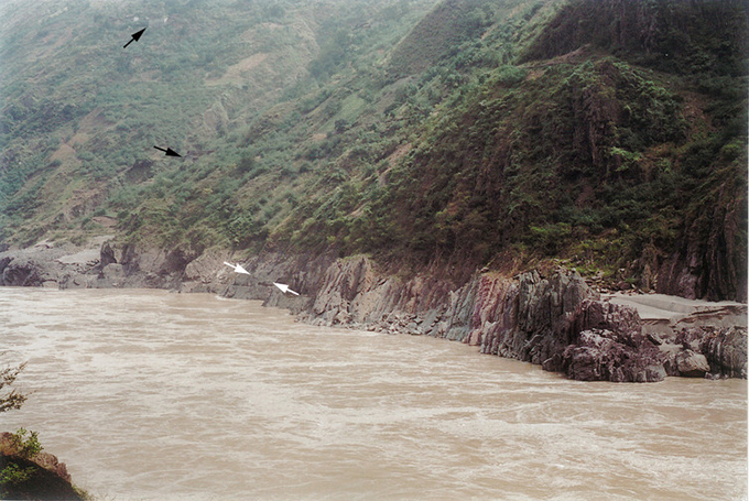 Site of fossil discovery (white arrows) by the Jinsha River, now submerged behind a hydroelectric dam. Farmers' cottages (black arrows) give scale. Zhang Xiguang, Author provided